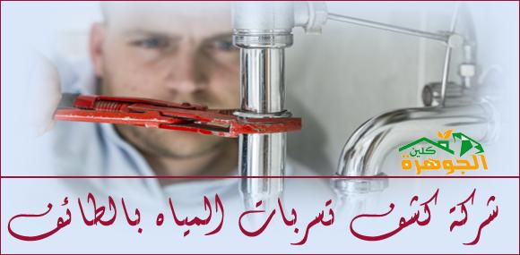 شركة كشف تسربات المياه بالطائف
