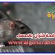 ارخص شركة مكافحة الفئران بالاحساء