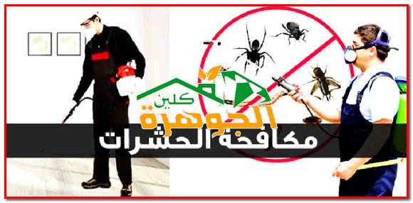 شركة مكافحة حشرات بالدرب