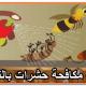 شركة مكافحة حشرات بالنماص