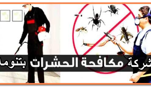 شركة مكافحة حشرات بتنومه