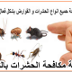 شركة مكافحة الحشرات بالصحنة