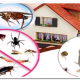 شركة مكافحة حشرات باحد المسارحة