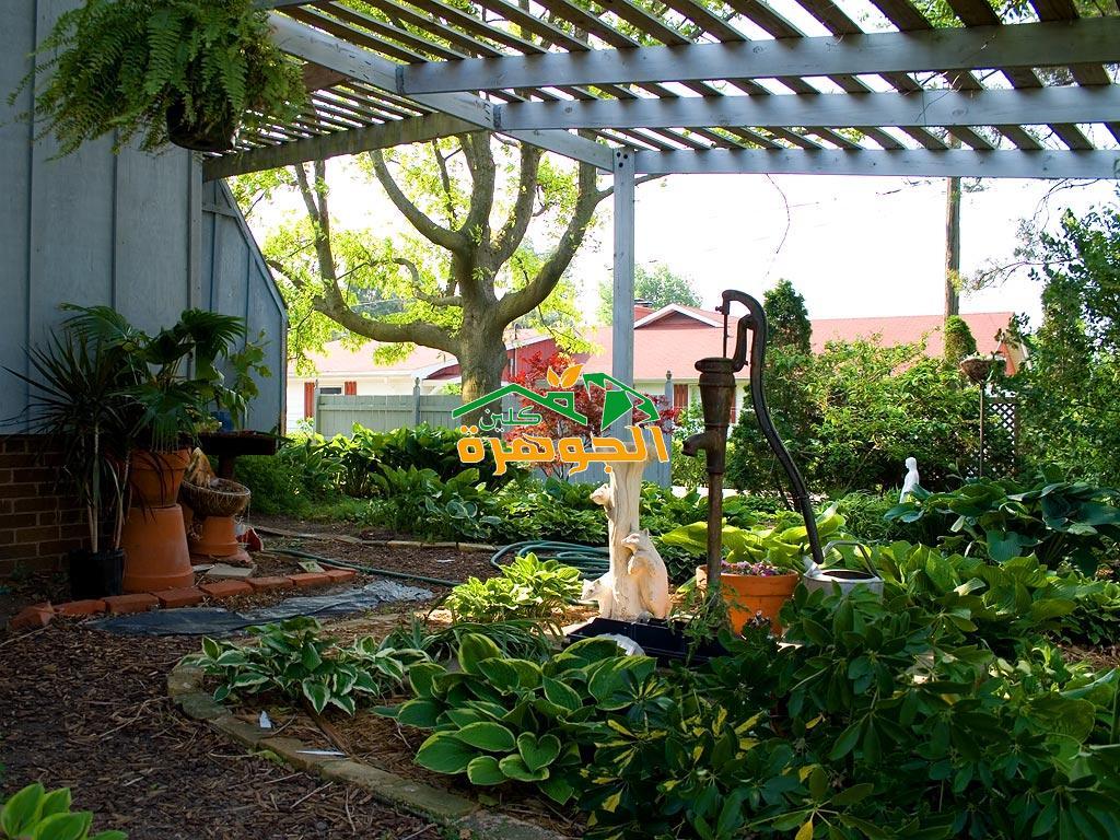 تصميم حدائق منزلية في المدينة