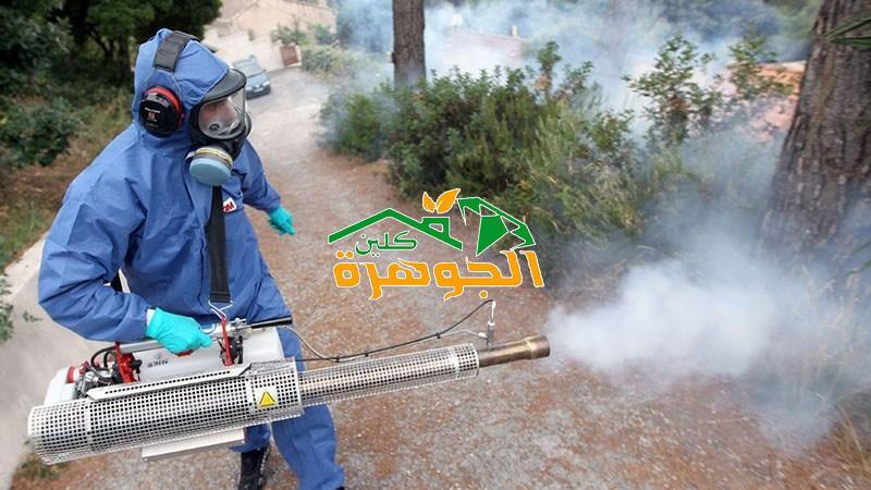 شركة رش مبيدات بينبع