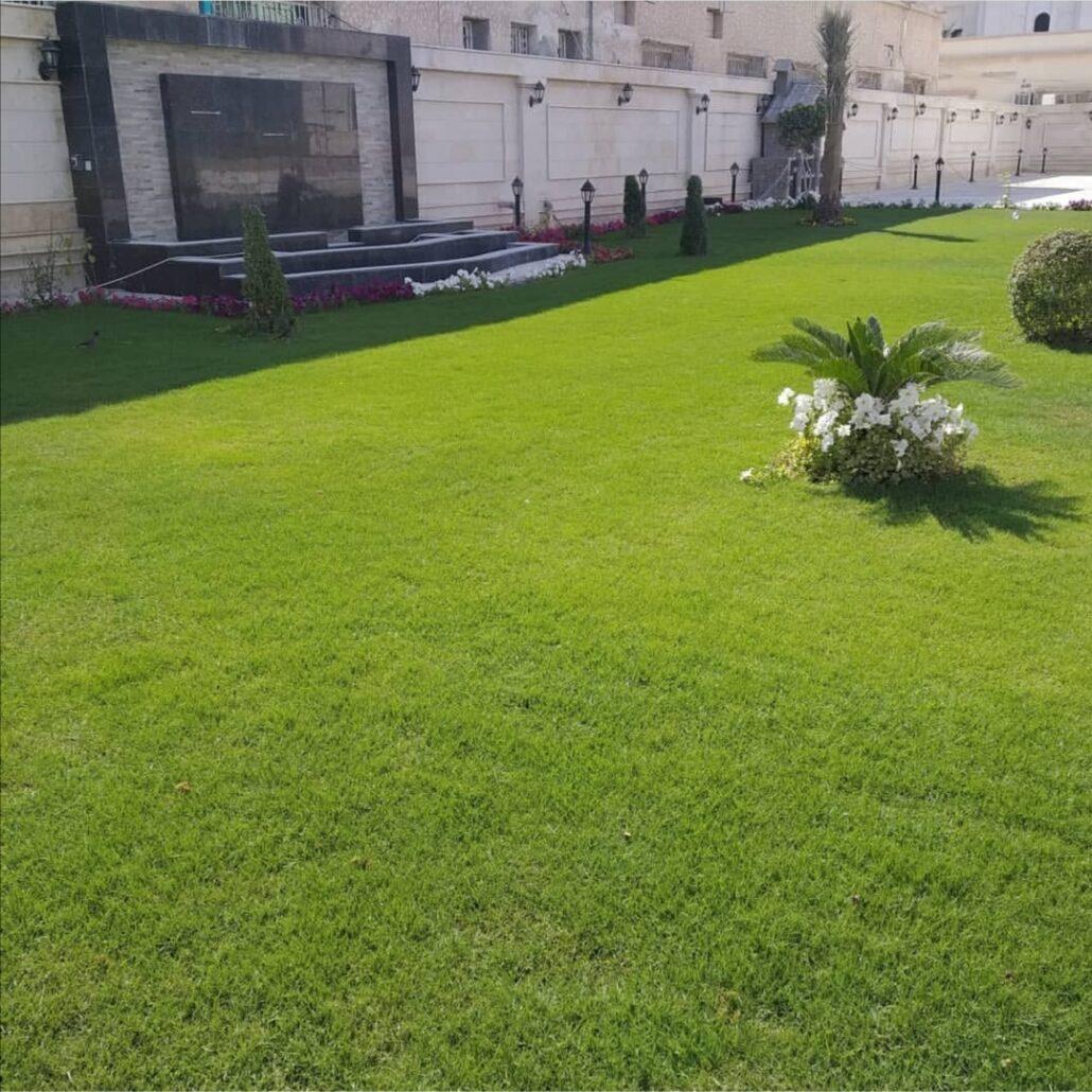 شركة تركيب وتوريد عشب صناعي بالطائف