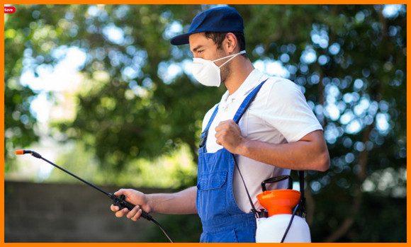 شركة رش مبيدات ببيش للايجار 01025284450